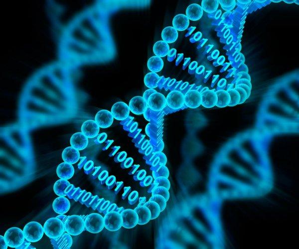Ученые разработали инструменты для определения генетических причин ранней эпилепсии