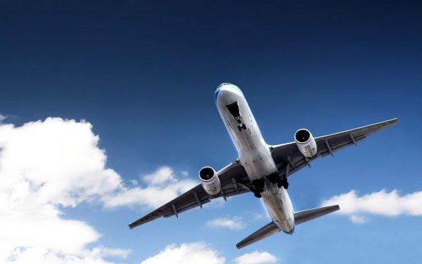 Авиаперевозчик рассказал о самых удивительных просьбах пассажиров