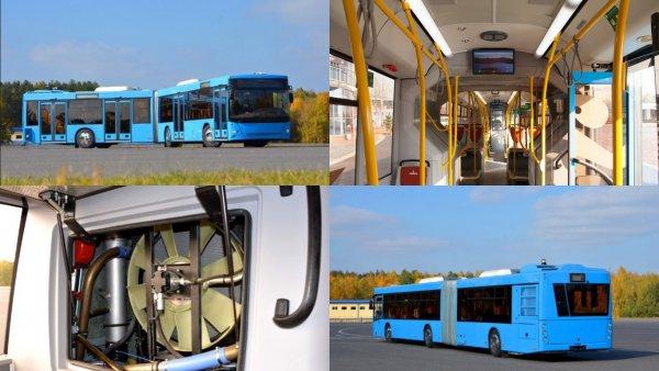 МАЗ выпустит новый просторный автобус-гармошку
