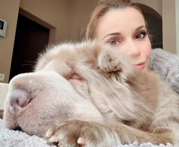 Ольга Орлова раздала полмиллиона мисок еды животным в приюте