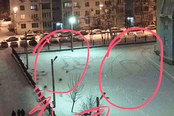 Инопланетяне оставили в Ростове загадочные картинки в виде половых органов