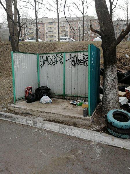 Нечистое дело: Жители Владивостока жалуются на повсеместную пропажу мусорных баков