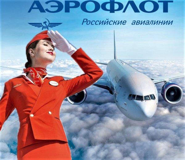 Словно в параллельной вселенной: Эконом-класс «Аэрофлота» превзошёл бизнес-класс других авиакомпаний