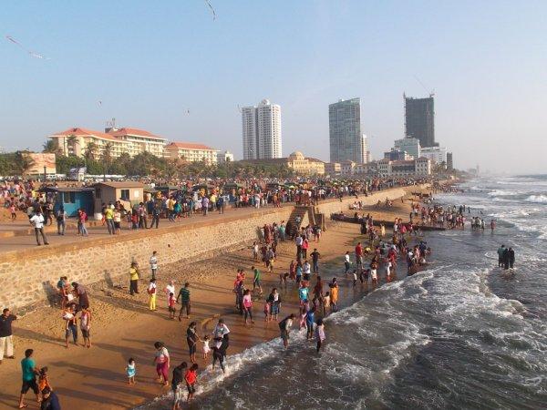 Надо заменить туры, - Ростуризм отреагировал на теракты в Шри-Ланке