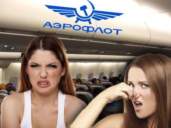 Хвалённая клиентоориентированность от «Аэрофлота»: пассажиры рассказали об изъянах компании