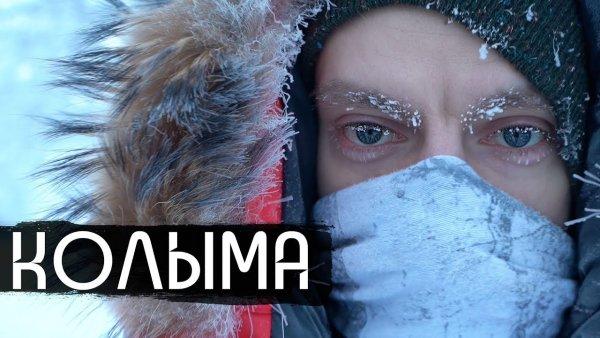 Коленочки затряслись? Зачем Павел Дуров мог проплатить деанонимизацию «Сталингулага» и фильм Дудя